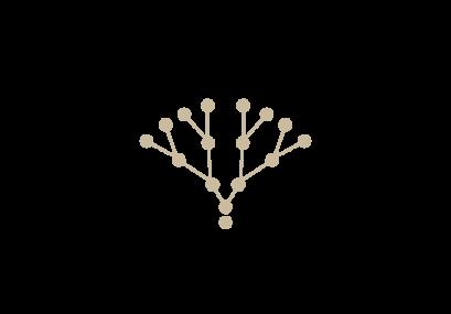 logo-vino-blasich